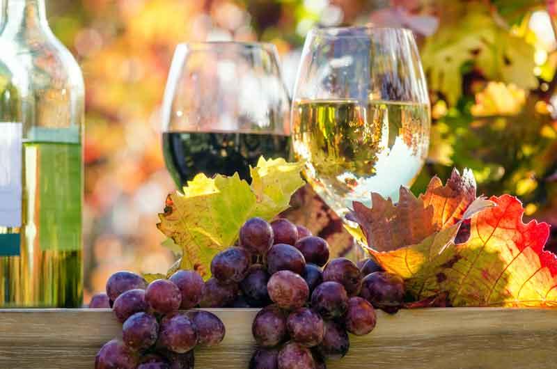 Rotwein und Weißwein in Gläsern und Trauben auf dem Tisch